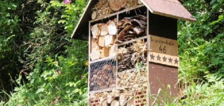 Insektenhotel Bauanleitung Das Garten Lexikon Der Pflanzenfamilien