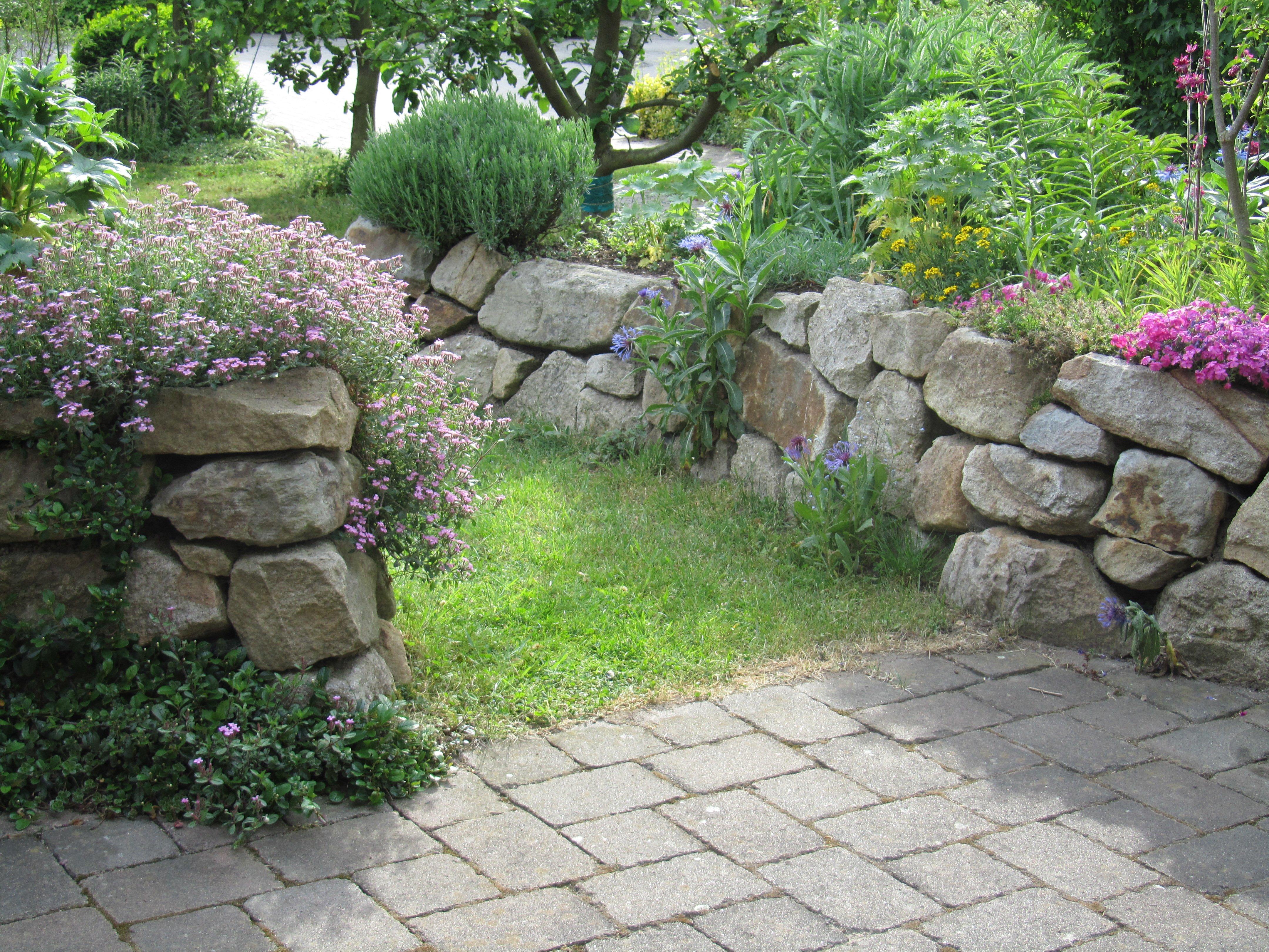 Trockenmauern das garten lexikon der pflanzenfamilien von floristik24 - Steingarten anlegen aufbau ...