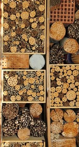 insektenhotel pflegetipps das garten lexikon der. Black Bedroom Furniture Sets. Home Design Ideas