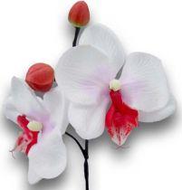 Orchidee mini 25cm Weiß, Fuchsia