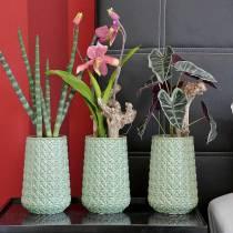 Alokasie Pfeilblatt Grün, Violett Kunstpflanze H48cm