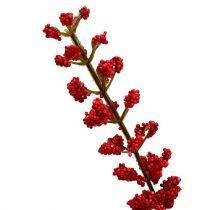 Astilbenbusch Rot 52cm