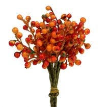 Beerenbund Orange L20cm