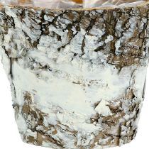 Birkentopf mini Weiß Ø7cm H7cm