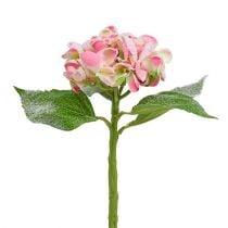 Hortensie Rosa beschneit 33cm 4St