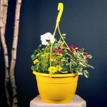 Blumenampel 25cm Lila