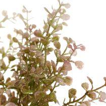Buchsbaumzweig Rosa, Pink mit Glimmer 32cm
