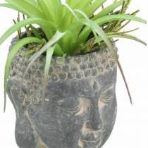 Buddhakopf zum Bepflanzen Antik-Look Beton Schwarz Ø8 H8cm