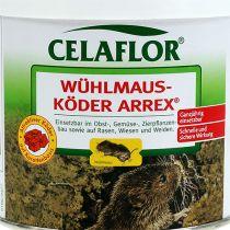 Celaflor Wühlmausköder Arrex 100g