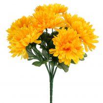 Chrysantheme Gelb mit 7 Blüten