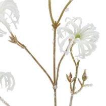 Clematis Zweig Weiß beflockt 62cm 3St