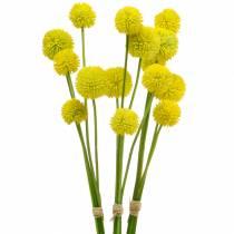 Trommelschlägel Craspedia Gelb Künstliche Gartenblume Seidenblumen 15St