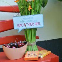 """Schild zum Aufhängen """"Kirschen und Schokolade"""" 24cm x 13,5cm 3St"""