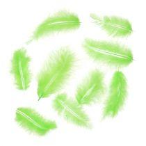 Feder kurz Hellgrün 30g