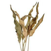 Deko Blätter Natur 120cm 20St