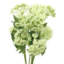Dill künstlich Weiß 49cm 6St