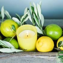 Duftkerze im Glas Zitrone-Basilikum Ø7cm