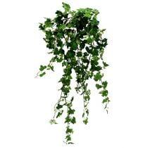 Efeuhänger Grün 90cm