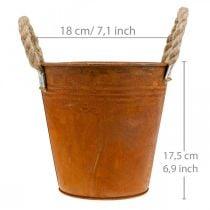 Pflanztopf mit Edelrost, Metallgefäß, Herbstdeko Ø18cm H17,5cm