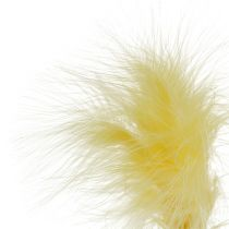 Feder am Stab L 30cm Gelb 12St
