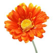 Gerbera Orange Ø10cm L55cm 6St
