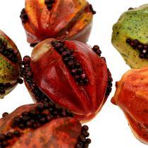 Herbstfrüchte 3,5cm Rot, Braun 24St