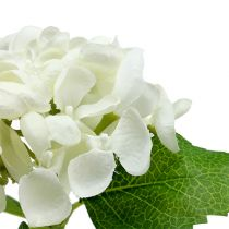 Hortensie 33cm Weiß 1St