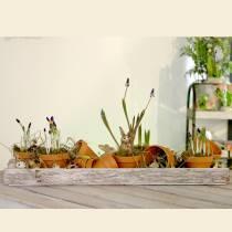 Holztablett mit Rinde Natur, weißgewaschen 59cm x 20cm