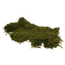 Indianmoos Waldmoos Grün Natur 2kg