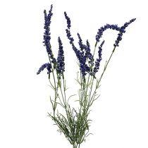 Lavendelbusch 55cm Blau