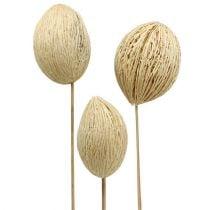 Mintolla Ball gebleicht 8cm - 10cm L46cm 6St