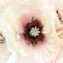 Mohnblume Weiß, Rosa 29cm 6St