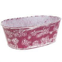 Zinkschale Oval mit Schmetterlingen Pink 29,5cm H10cm