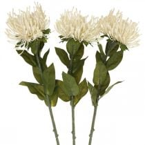 Nadelkissen Kunstblumen Exoten Leucospermum Creme 73cm 3St