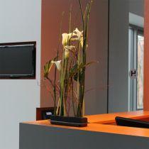 OASIS® Black Table Deco Medi Steckschaum 4St