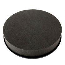 OASIS® All Black Zylinder Steckmoos Ø28cm H5cm 2St