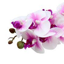 Orchideenzweig Weiß-Rosa L58cm