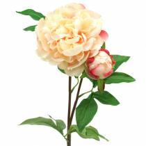 Pfingstrose mit Blüte und Knospe künstlich Pfirsich 70cm