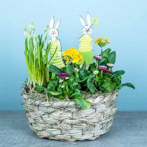 Pflanzgefäß aus Heu, Deko-Korb, Pflanzkorb, Blumen-Korb oval 3er-Set