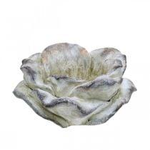 Rosenblüte zum Bepflanzen, Trauerfloristik, Steinrose, Betondeko Grau, Apricot, Violett Ø11cm L22cm H9cm