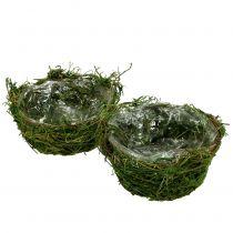 Pflanzschale mit Moos Ø16cm H9cm - 10cm Grün 3St