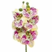 Künstlicher Orchideenzweig Phaelaenopsis Grün Pink H49cm