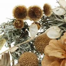 Herbstdeko Mix als Bastelset Getrocknet Gebleicht 150g