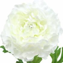 Ranunkel Weiß H45cm