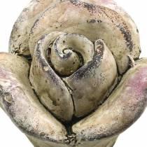 Beton-Rose Grau, Violett Ø7,7 H5,5cm 3St