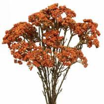 Schafgarbe künstlich Orange 74cm 3St