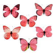 Schmetterling Pink am Clip 11cm 6St