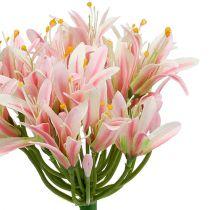 Seidenblume Agapanthus Rosa 80cm