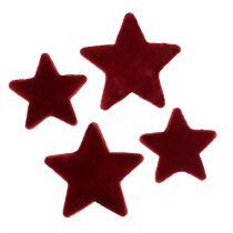 Stern Dunkelrot 4-5cm beflockt 40St