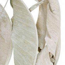 Strelitzienblätter Weiß gewaschen Getrocknet 45-80cm 10St
